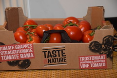 DSC_7589 Vine Ripe Tomatoes from the Turkish Supermarket £7.49 per box Taste by Nature Tomate Grappes Strauchtomate Tomate Rama Trostomaat Pomodora A Grappolo (photographer695) Tags: vine ripe tomatoes from turkish supermarket £749 per box taste by nature tomate grappes strauchtomate rama trostomaat pomodora a grappolo