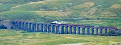 Flying Scotsman on Ribblehead Viaduct (stevepreston99) Tags: yorkshiredales yorkshiredalesnationalpark flyingscotsman ribbleheadviaduct fujifilmxm1