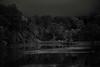Beebe Lake (Seeing Visions) Tags: 2017 unitedstates us newyork ny ithaca cornelluniversity beebelake forest water reflection dark monochrome bw raymondfujioka