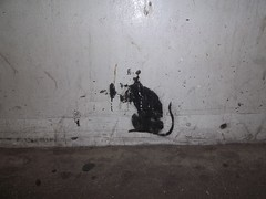 Banksy (doojohn701) Tags: banksy white rat graffiti dirt london southwark uk