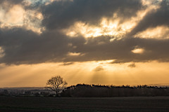 Sunrise (ianbonnell) Tags: sunrise billinge merseyside