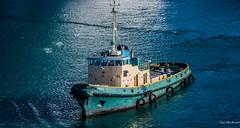 2017 - Regent Cruise - St. Lucia - Tug Chale (Ted's photos - For Me & You) Tags: 2017 cropped nikon nikond750 nikonfx regentcruise stlucia tedmcgrath tedsphotos vignetting castries imo 6513023 jithornycroftco castriesstlucia chale chaletugboat tugboat tug chaletug castrieschale castriestugchale chaletugcastries boat workingboat