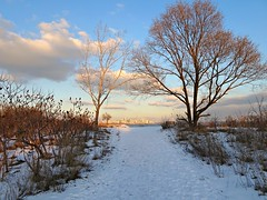 """""""""""Happiness starts with you.  Not with your relationships, not with your job, not with your money but with you. """" (Trinimusic2008 - stay blessed) Tags: trinimusic2008 judymeikle nature yesterday winter cold snow february 2018 afternoon sky light humberbaypark walk frigid outdoors lakeontario trees city cntower toronto to ontario canada clouds snowy sonydschx80"""