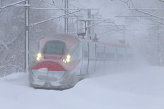 Snow express (Teruhide Tomori) Tags: 秋田県 秋田市 奥羽本線 日本 東北 秋田新幹線 こまち e6系 高速鉄道 ミニ新幹線 電車 列車 鉄道 railway railroad train japon japan tohoku akita superexpress bullettrain komachi e6series akitashinkansen winter snow 雪 red snowstorm blizzard 暴風雪 雪嵐 新幹線 shinkansen
