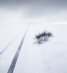 Knole Snow Track (Dan Portch) Tags: snow knole knolepark sevenoaks sevenoaksknolepark national trust nt tracks white whites winter beastfromtheeast beast from east kent blizzard minimal fine art