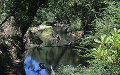 798 Orara Way, Nana Glen NSW