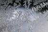DSC_7808 (harynjk23) Tags: frostwork winter freez jégvirág tél macro nikon d5300 extension tubes