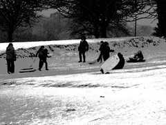 Chalk and Charcoal (devonpaul) Tags: sledging budleigh chalk charcoal salterton