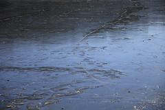 Icy Ici #1 (Keith Michael NYC (3 Million+ Views)) Tags: vancortlandtpark thebronx newyorkcity newyork ny nyc