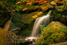 Sun Kissed (winn.timothy59) Tags: water stream flowing nature warmth mountains