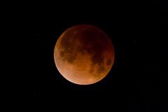 Eclipse (GavinZ) Tags: california lunareclipse sandiego usa eclipse moon night bloodmoon astrophotography sky