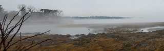 Fog Over Manhasset Bay; Manhasset, New York