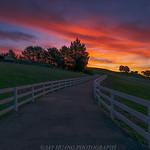 Morning Farm thumbnail