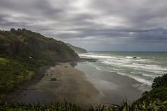 20180207-IMG_0127 (alexeyborissov) Tags: auckland aucklandnz newzealand nz muriwai bay cliff coast gull nature natgeo nordland northland