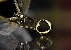 Zipper (Millie Cruz *Catching up slowly!) Tags: heart zipper fastener jacket glass reflection macromondays fasteners fabric metal golden