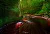 Devil's Pulpit (Rendeification) Tags: nikon d750 2470mm f28 scotland landscape finnich glen devils pulpit red water blood moss gorge
