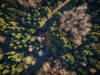 Where the Shadows fall - 9/365 (der_peste) Tags: droneshot drone djimavicpro aerial woods woodland timberland forest trees fromabove shadow light lightandshadow bavaria bayern germany
