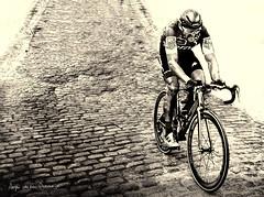 Greg van Avermaet (Arjan van den Oudenrijn) Tags: adrianus adrianusz arjan adrianuz arjanvandenoudenrijn oudenrijn greg van avermaet kinderkopjes bmc racing team parijs roubax winnaar paris parijsroubaix