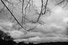 cloudy (RubyT (off to see kids & grandkids)) Tags: kpsigma1020dunbarcloudy pentaxkp sigma1020f35 clouds cloudy sky skyscape branches pentax pentaxart черноеибелое blackandwhite schwarzweiss noirblanc blancoynegrao mono monocromo monochrome