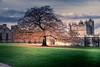 BCbw (Lens Perception) Tags: 2017 autumn castle damage november bolsover derbyshire