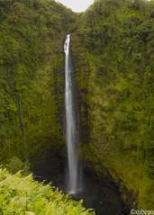 Akaka Falls (xubean) Tags: hawaii hawaiiisland photography nepaliphotographer nepali