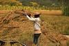 IMG_0454 (Kalina1966) Tags: bali island indonesia people rice field