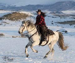 CodyWU_012318_1131 (Roni Chastain Photography) Tags: horses wyoming thehideoutranch wranglers big sky snow winter horse ridershorses west westernwear western