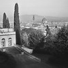 Duomo View from Belvedere (Paul DeDomenico) Tags: florence italy duomo braun gloria cyprus garden boboli