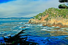 IMG_3479 (CornellBurgessphotography) Tags: seascapes bigsur pointlobos carmelbay california pacificocean montereybay cornellburgess