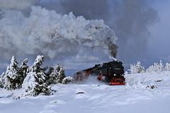 99 7240 (René Große) Tags: train zug harz brocken winter snow hsb schmalspurbahn brockenbahn rail railways