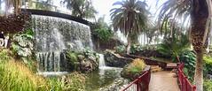 """Cascada tropical"" (atempviatja) Tags: taoroparque islascanarias tenerife puertodelacruz tropical agua naturaleza plantas parque cascada"