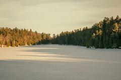 Canadian Pink lake