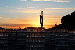 Bruce Munro:  Sonoran Light (joeksuey) Tags: brucemunro sonoranlight desertbotanicalgarden phoenix arizona joeksuey roadrunner sunset spring fiberoptics watertowers hillsideoflights