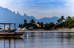 Ilha de Paquetá - Rio de Janeiro (mariohowat) Tags: ilhadepaquetá paquetá natureza gaivota entardecer brasil brazil riodejaneiro canon6d canon
