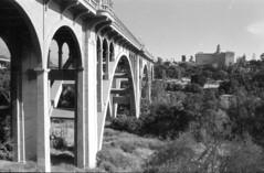 Colorado Street Bridge (Immane) Tags: pentaxspotmaticii supermulticoatedtakumar 28mmf35 135 35mm film analog aristaeduultra100 fomapan rodinal 125 blackandwhite monochrome bw roll145 losangeles pasadena landscape architecture k2filter coloradostreetbridge suicidebridge