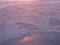 (evisdotter) Tags: ice is sunrise snow patterns texture winter nature sooc morning light reflections coth5