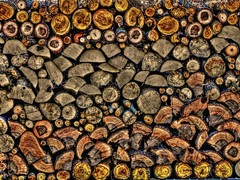 Stacked Wood (clarkcg photography) Tags: stacked wood rick cord firewood logs colors shapes stackandfittogether smileonsaturday