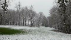 P1070172 Nature temps de neige 08 -Neuville (jeanchristophelenglet) Tags: cergyfranceétangsdecergyneuville neige snow neve arbre tree arvore nature natureza paysage landscape paisagem