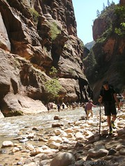 Early on walking the river to the Zion Narrows (Annes Travels) Tags: zionnationalpark utah zionnarrows canyon virginriver desert
