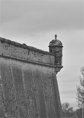 CV 254 (cadayf) Tags: 33 gironde blaye monument citadelle fortification unesco nb bw échauguette paysage landscapeb vauban architecture