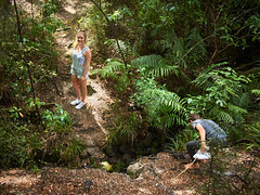 Beating about the Bush 29 (C & R Driver-Burgess) Tags: girl boy preteen young woman niece son curly blonde hair reeds rushes toitoi sticks play fight fencing dual battle pretend fun share shortalls denim track pants lacy singlet black tshirt dry summer sun forest clearing path bush native new zealand aotearoa two together pair cousins