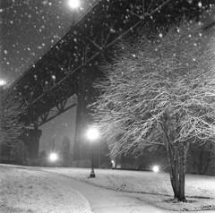 My issue with bad weather (Zeb Andrews) Tags: hasselblad stjohnsbridge snow night kodaktrix hasselblad500c 6x6 flash snowing portland oregon pacificnorthwest cathedralpark cityscape urban