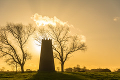golden memories (stevefge) Tags: 2017 autumn beverley uk mill windmills trees bomen landscape yorkshire eastyorkshire westwood contralux tegenlicht reflectyourworld