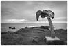 _DSC3596ed (alexcarnes) Tags: orkney birsay skiba geo whale bone alex carnes nikon d810 sigma 2435 f2 art