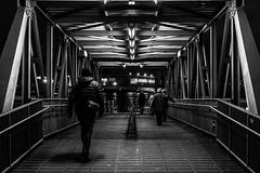 walk the way of light / an evening at the harbor (Özgür Gürgey) Tags: 50mm 2018 bw d750 hamburg landungsbrücken nikon architecture evening grainy lights lowlight people repetition street