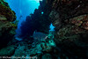 Tarpons and Canyons (mbfirefly) Tags: wideangle scuba underwater diving cayman ci uw