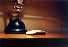 Anemone (Leopoldo_Ferrari) Tags: color film analog photo foto photography pic colors colori colore pellicola rullino analogico old vecchio stile style nikon camera vintage