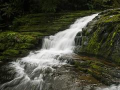 Mclean Falls (Alfredo Esing) Tags: falls water waterfall nature hike hiking olympus newzealand nz walk trip omdem5ii omd wonderlust