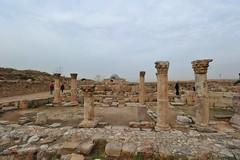 Citadel, Amman, Jordan 23 (tango-) Tags: giordania jordan middleeast mediooriente الأردن jordanien 約旦 ヨルダン citadel amman