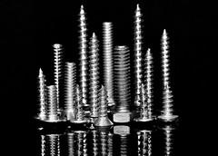 Macro Mondays - Fastener - Skyline (zendt66) Tags: zendt66 zendt nikon d7200 nikkor 105mm macromonday macromondays fastener skyline screw bolt reflection fotodiox bw